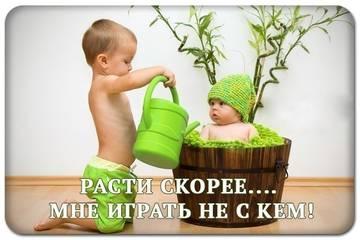 http://sa.uploads.ru/t/T3JtA.jpg