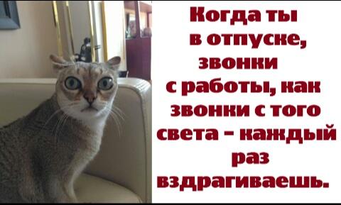 http://sa.uploads.ru/t/T7pq0.jpg
