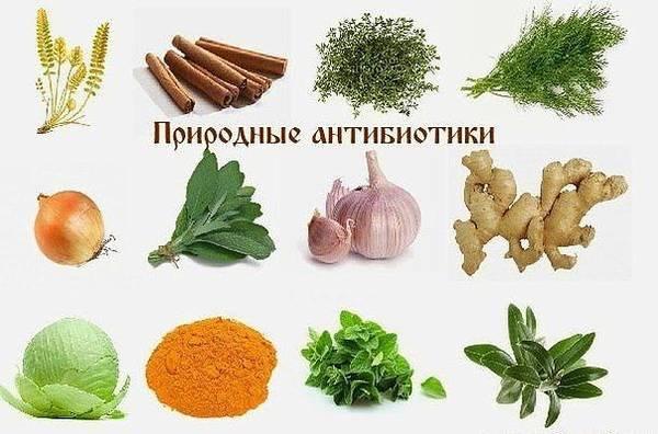 http://sa.uploads.ru/t/TBDVj.jpg
