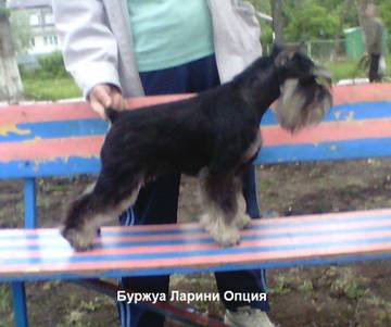 http://sa.uploads.ru/t/Tblfn.jpg