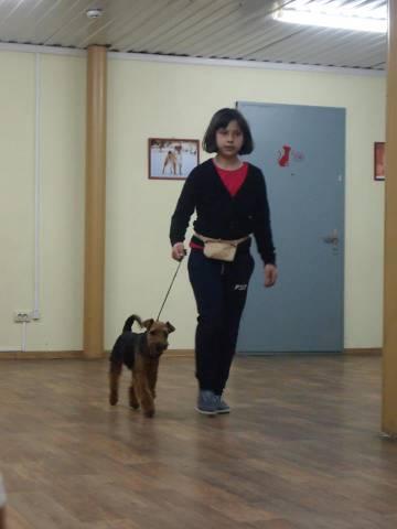 http://sa.uploads.ru/t/ULnfB.jpg