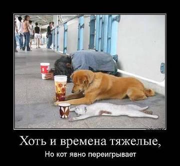 http://sa.uploads.ru/t/VGqUc.jpg
