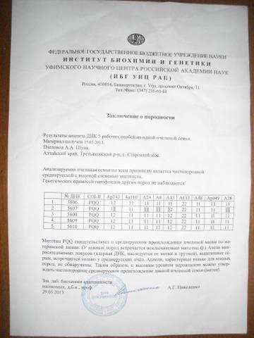 http://sa.uploads.ru/t/VLebT.jpg