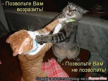 http://sa.uploads.ru/t/VtQGs.jpg