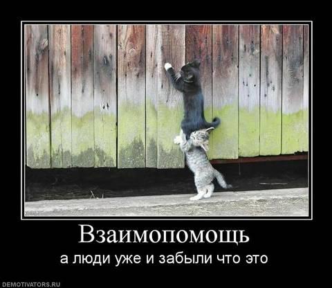 http://sa.uploads.ru/t/Wy03q.jpg