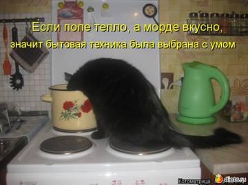 http://sa.uploads.ru/t/XFuQy.jpg