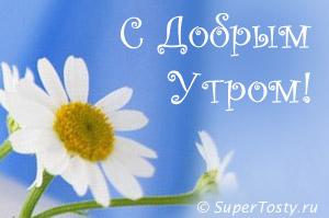 http://sa.uploads.ru/t/XwY90.jpg
