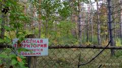 http://sa.uploads.ru/t/Y4Mnd.jpg