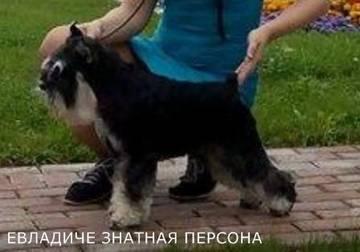 http://sa.uploads.ru/t/YHvF6.jpg