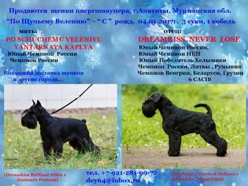 http://sa.uploads.ru/t/Ygo0b.jpg