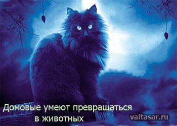 http://sa.uploads.ru/t/ZBdyU.jpg