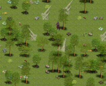 Новый лес - Видеознакомство!!