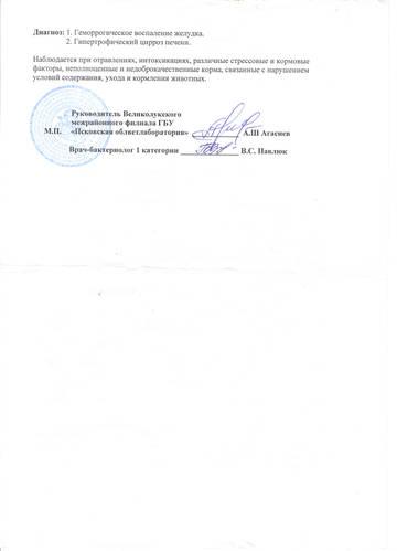http://sa.uploads.ru/t/abj3y.jpg