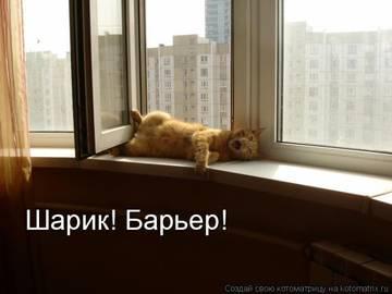 http://sa.uploads.ru/t/adMZD.jpg