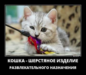 http://sa.uploads.ru/t/ayPT7.jpg