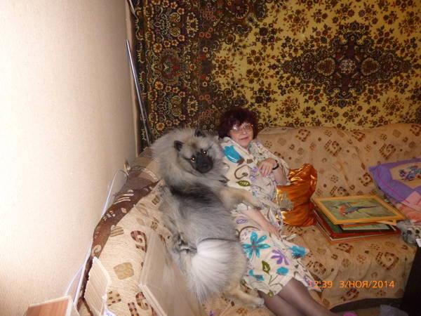 http://sa.uploads.ru/t/bB2PK.jpg