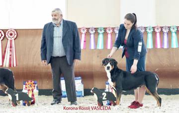 Монопородные выставки БШЗ и БЗ, ранга ЧК, 28.05.2017