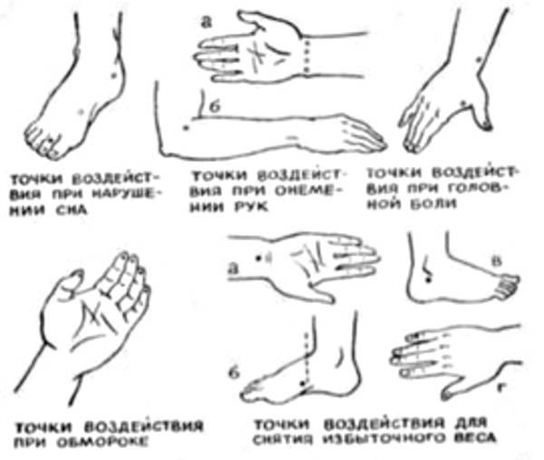 http://sa.uploads.ru/t/cMjzP.jpg