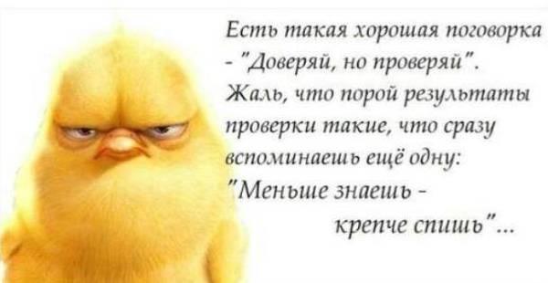 http://sa.uploads.ru/t/ceELT.jpg
