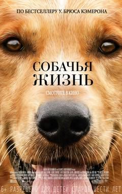 http://sa.uploads.ru/t/ckspx.jpg