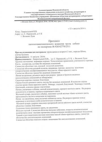 http://sa.uploads.ru/t/coI9e.jpg