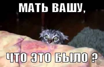 http://sa.uploads.ru/t/d2STE.jpg