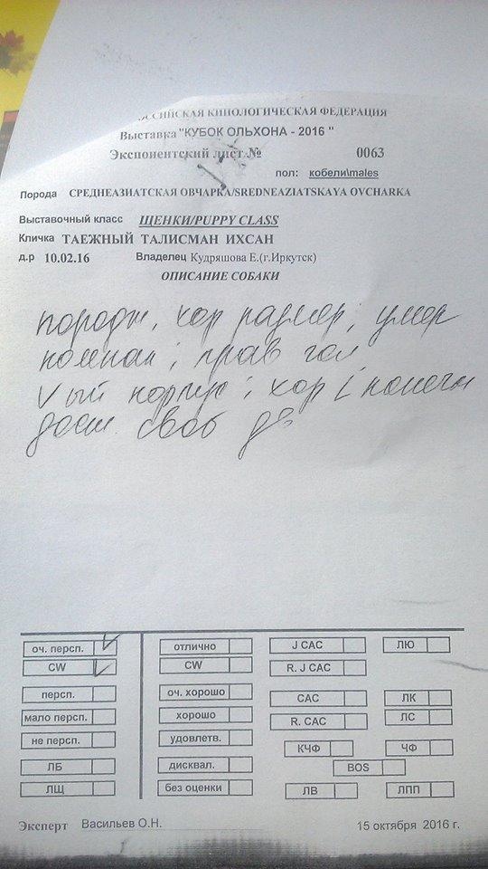 http://sa.uploads.ru/t/dA7sm.jpg