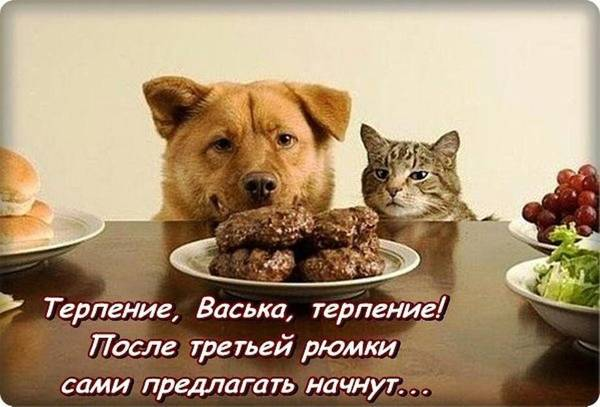 http://sa.uploads.ru/t/eoDpB.jpg