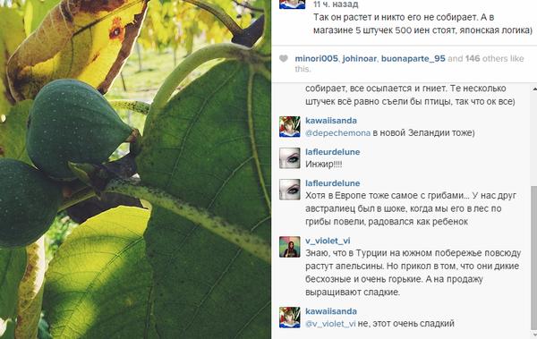 http://sa.uploads.ru/t/eoNYv.png