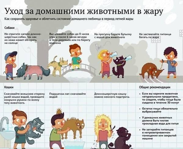 http://sa.uploads.ru/t/eruUC.jpg