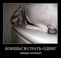 http://sa.uploads.ru/t/fXxPe.jpg