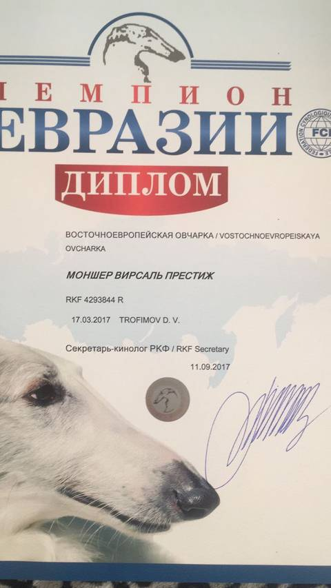 http://sa.uploads.ru/t/fzv6u.jpg