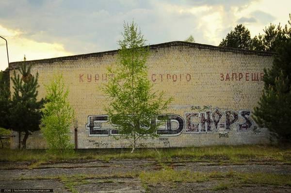 http://sa.uploads.ru/t/gGUr8.jpg
