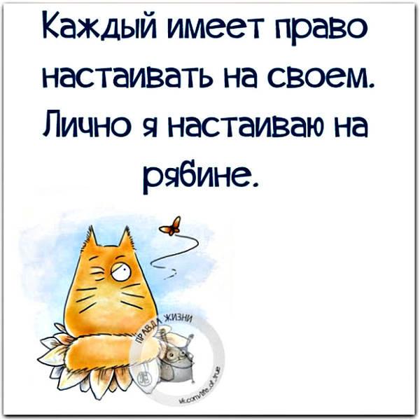 http://sa.uploads.ru/t/hXPZ1.jpg