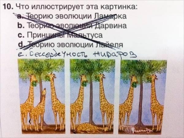 http://sa.uploads.ru/t/i0M5n.jpg
