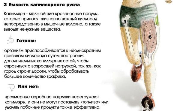 http://sa.uploads.ru/t/iX6u5.jpg