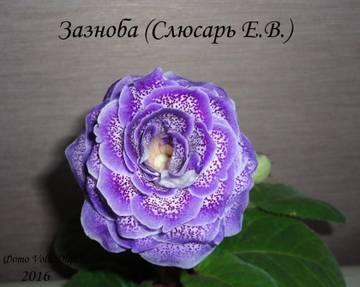 http://sa.uploads.ru/t/jfWn8.jpg