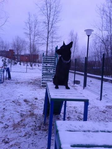 http://sa.uploads.ru/t/k02Hs.jpg