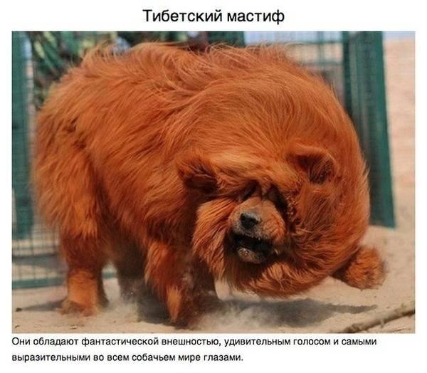http://sa.uploads.ru/t/k6TsI.jpg