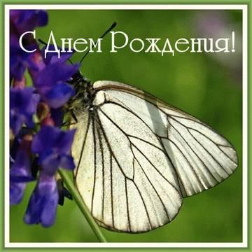 http://sa.uploads.ru/t/k8nlD.jpg