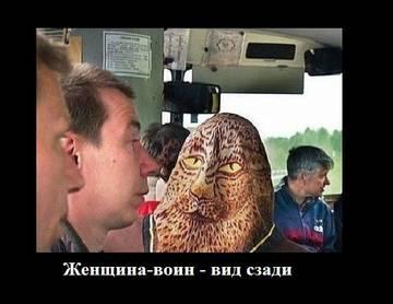 http://sa.uploads.ru/t/kRVNb.jpg