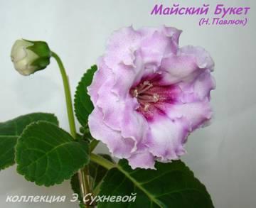 http://sa.uploads.ru/t/kS7pa.jpg
