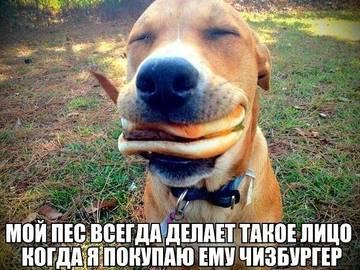 http://sa.uploads.ru/t/ktrxg.jpg