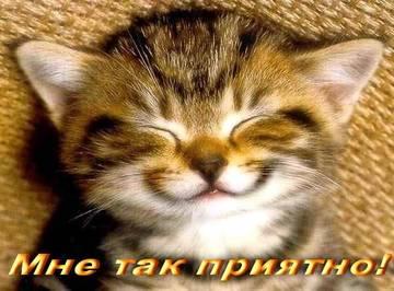 http://sa.uploads.ru/t/kxaJv.jpg