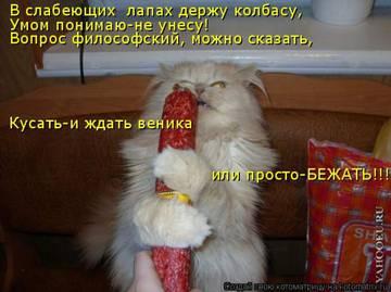 http://sa.uploads.ru/t/lAtEp.jpg