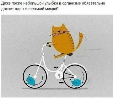 http://sa.uploads.ru/t/lKyEZ.jpg