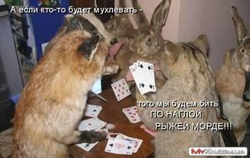 http://sa.uploads.ru/t/mYMQ6.jpg