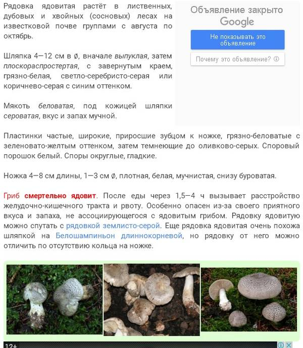 http://sa.uploads.ru/t/mYpqE.jpg