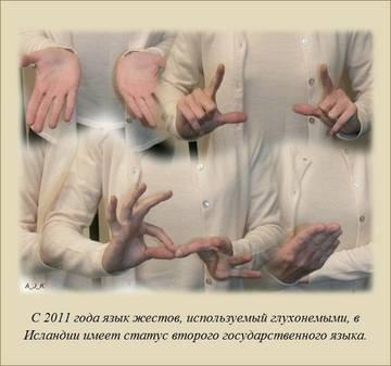 http://sa.uploads.ru/t/mjgnp.jpg