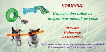 http://sa.uploads.ru/t/ncqPU.jpg